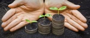 """Uma analogia de como """"plantar dinheiro"""" com investimento consciente."""