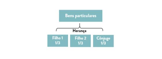 Esquema ilustrativo do exemplo na divisão de bens no caso de morte de um dos cônjuges - separação total de bens