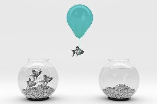 Fundos Imobiliários: Um peixe usando um balão para ir de um aquário para outro