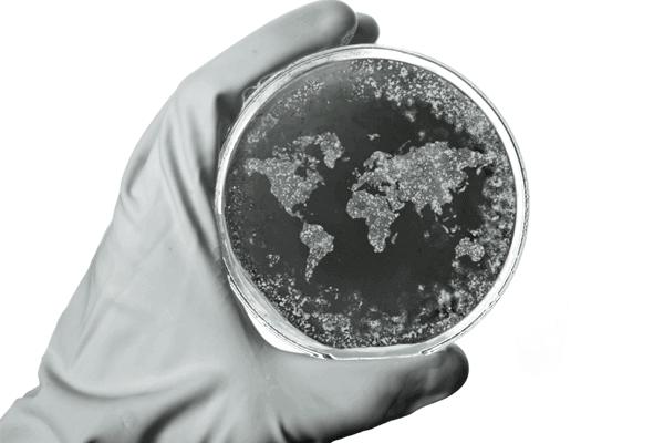 Impacto econômico das epidemias mundiais