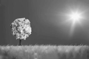 Índice Carbono Eficiente – ICO2
