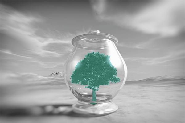 CDS - Uma árvore dentro de um pote