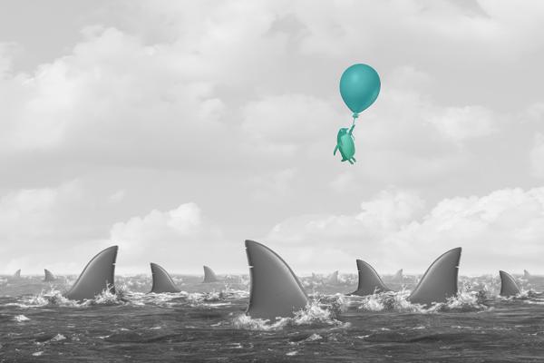 Perfil de risco - Um pinguim num balão voando sobre o mar cheio de tubarões.
